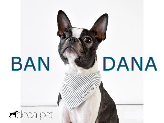 一枚巻くだけでおしゃれなDocaPetの犬用バンダナ